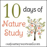 10 days of Nature Study by Our Journey Westward