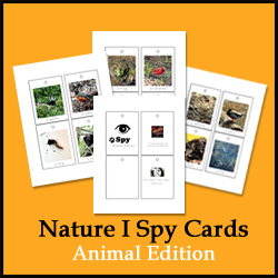 Nature I Spy Cards: Animal Edition