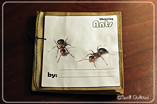 Ant paper bag journal