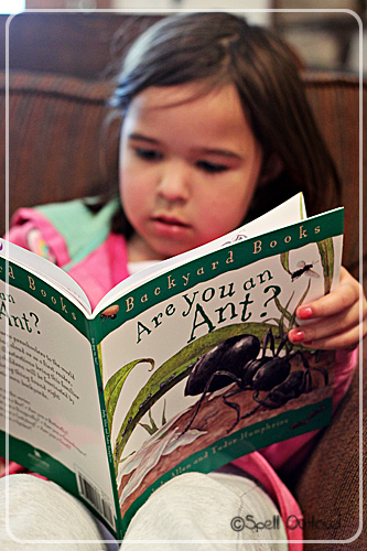 Are You an Ant? Backyard Books