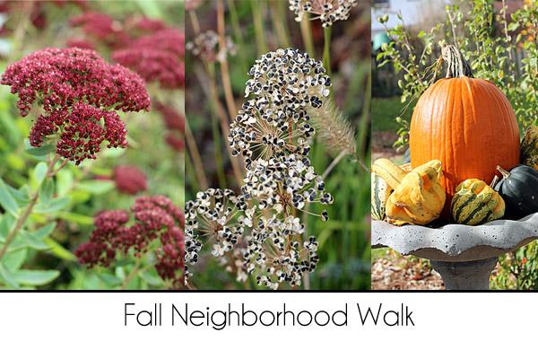 Fall-Neighborhood-Walk