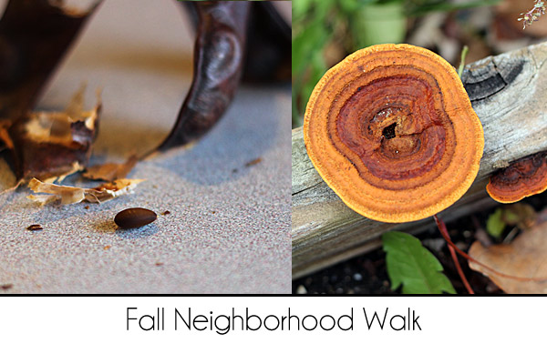 Fall-Neighborhood-Walk2