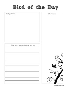 bird of the day notebooking page