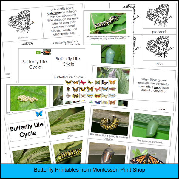 Montessori Print Shop Butterfly Printables