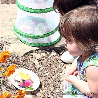 http://www.spelloutloud.com/2011/05/butterfly-butterfly-fly-fly-away.html