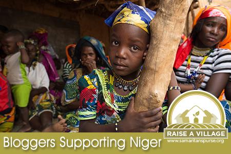 Raise a Village- Niger