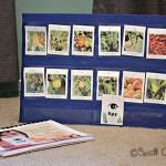 Nature Study Printable Activities