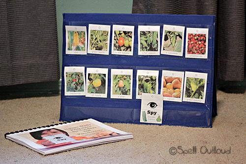 Nature Study Printable Activities