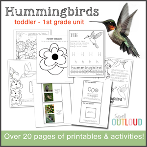 Hummingbird nature study unit