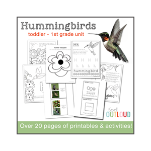 Hummingbird Nature Unit