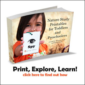 Nature Study Printables for Preschoolers and Toddlers