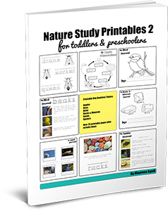 Nature Printables 2 for Toddlers and Preschoolers