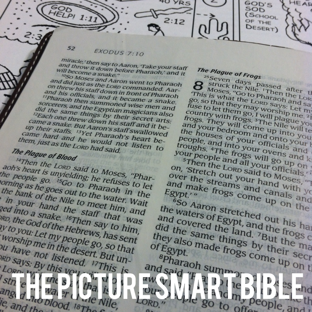 The Picture Smart Bible