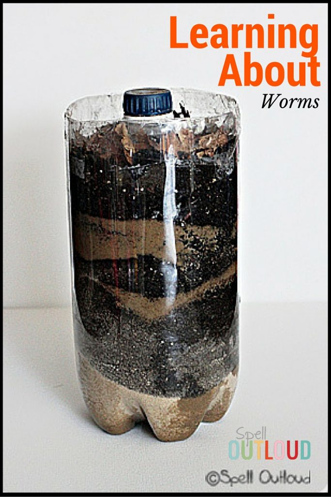 Learning About Worms