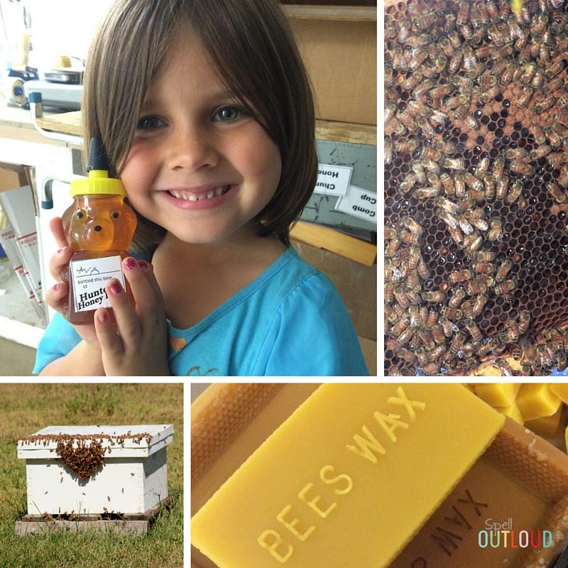 Hunter's Honey Bee Farm