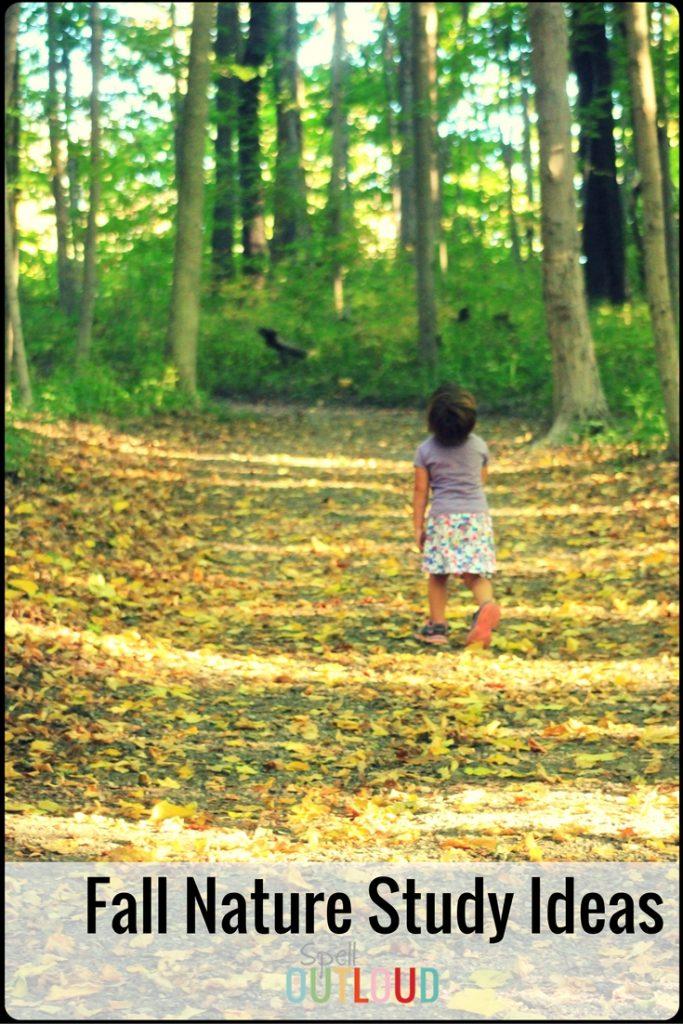 Fall Nature Study Ideas