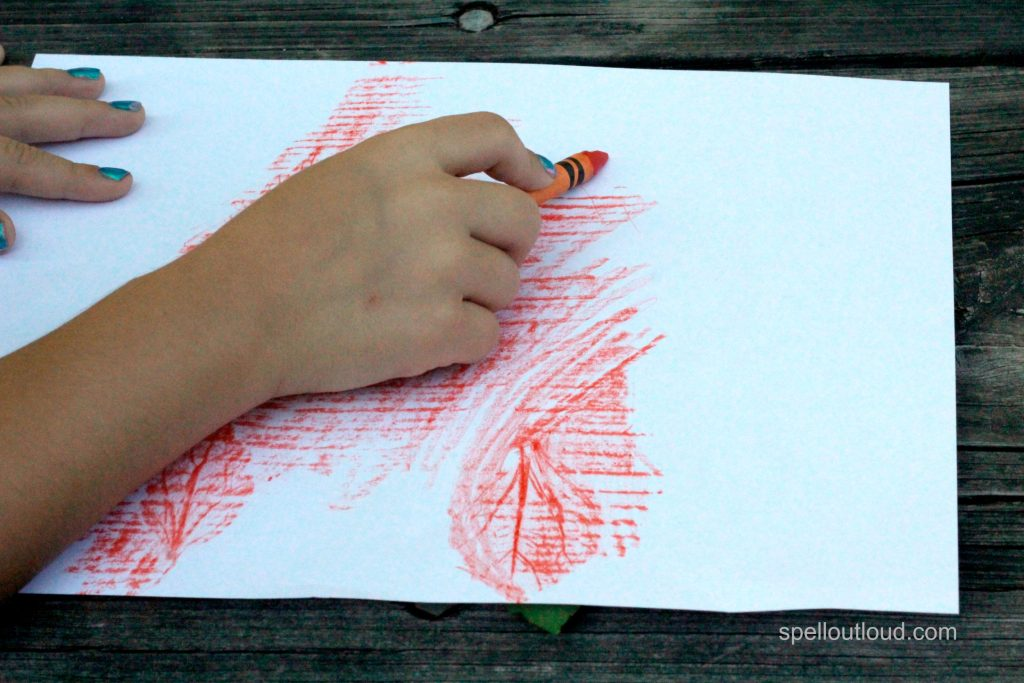 science experiments for preschoolers leaf rubbings