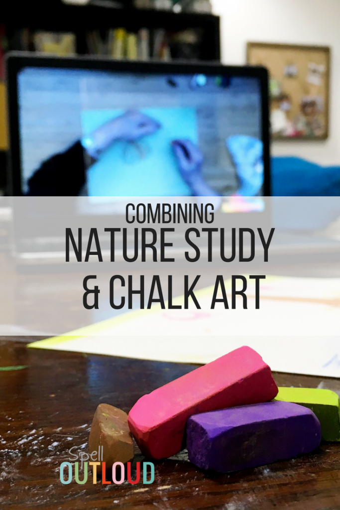 Nature Study and Chalk Art