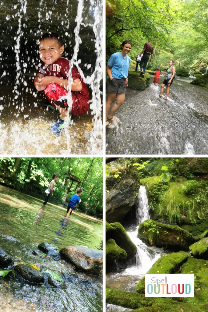 Creeks and Waterfalls Nature Study